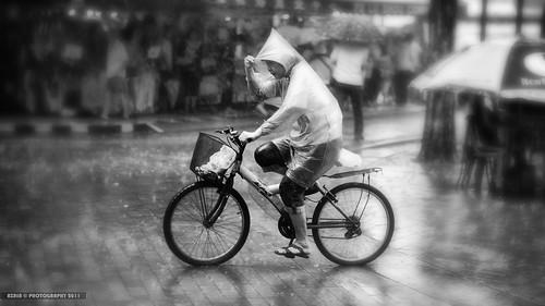 z Rides... by Scholesville