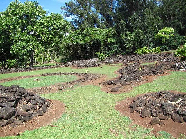 Picture from Keaiwa Heiau