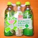 生茶パンダ先生! in ボトル