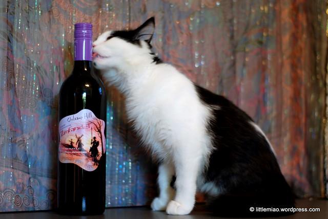 wine 10-1-2011 2-52-38 PM