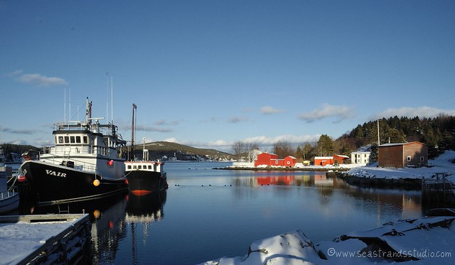 Conception Harbour