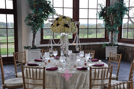 Tall Hydrangea centerpieces at Raspberry Plain in Leesburg Virginia