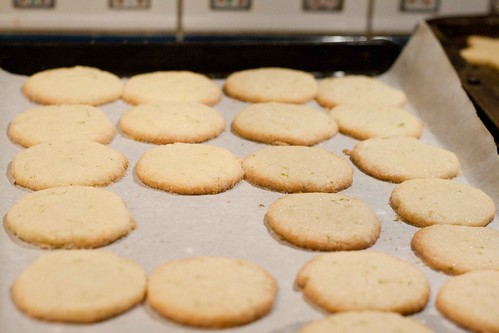 Lime Scented Wafers (4 of 5)