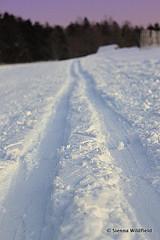 Nordic Skiing at Notchview
