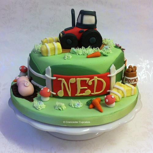 Cirencester Cupcakes - Ned's Farmyard Birthday Cake