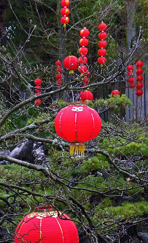 red lanterns in the garden