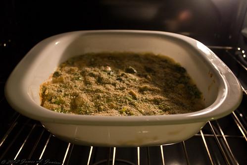 Chicken Broccoli Bake 09