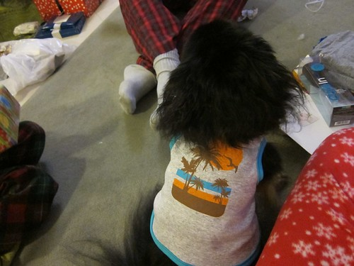 Kichou's Christmas Shirt