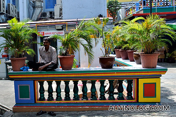 Indian dude hiding from the fiery sun between the shades of some potted plants