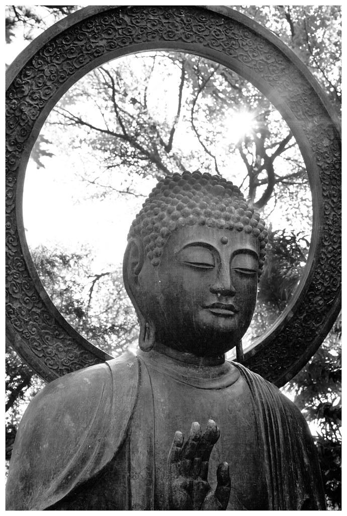 Garden Budha