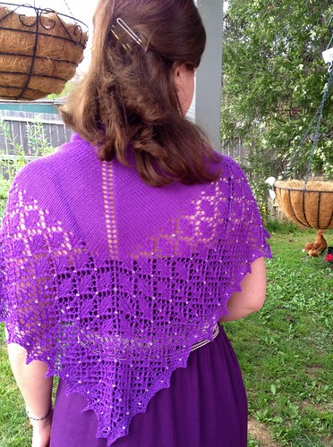 karise shawl back view