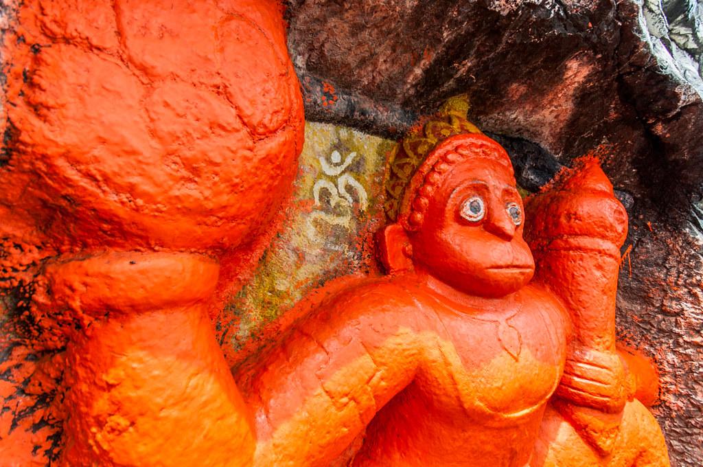 BrahmagiriTrekTrimbakeshwar_81