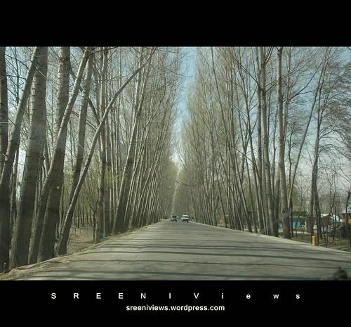 On the wheels, road to Srinagar, Kashmir, India