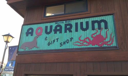 Morro Bay Aquarium and Gift Shop