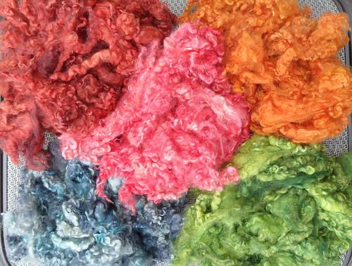 Dyeing Experiment Continued - Wensleydale Lamb Fleece