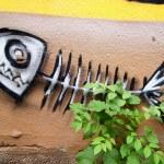 Maynard's Street Art Obsession – Krakow