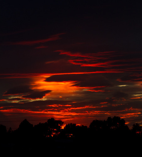 SunsetNov2011ED-1731