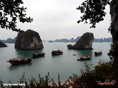Cong Do Island