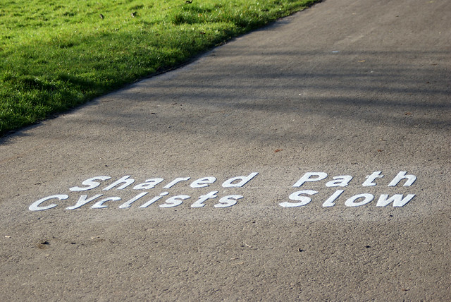Path through Ashton Court, Bristol