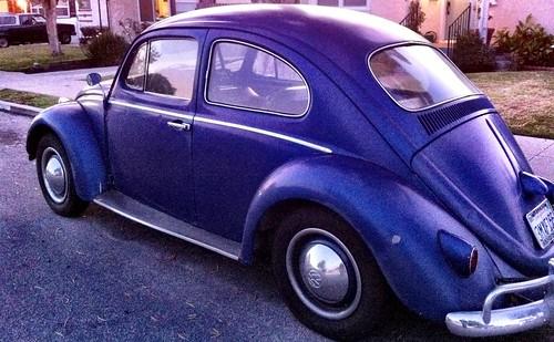 27/366: Blue Beetle by juanita805