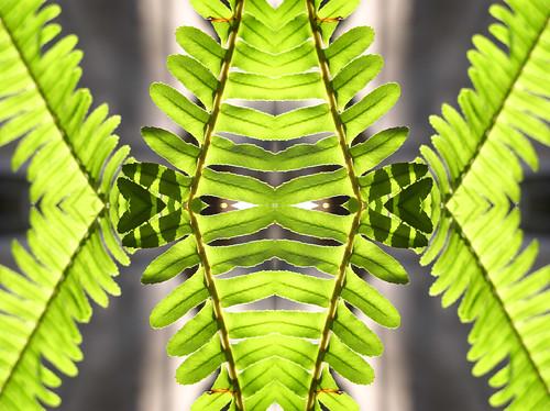 Unfolding by Jason A. Samfield