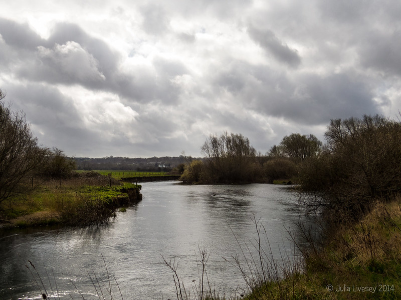 River Stour at Cowgrove