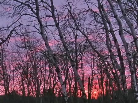 Winter sunrise near Duck Lake