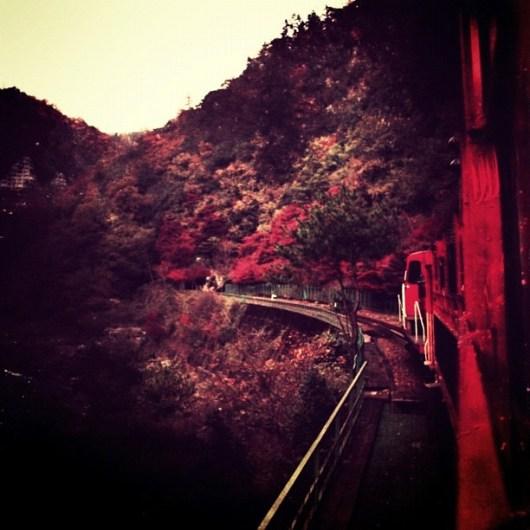 トロッコ列車 #autumn #pictool #bleachbypass #instagramer