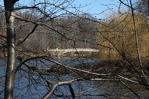 Footbridge and trees in Central Park