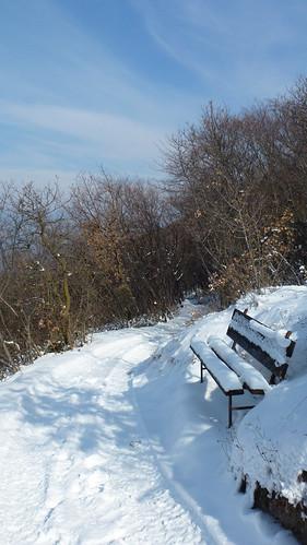 panchina con neve