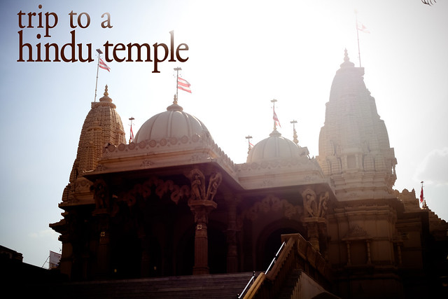 Trip To A Hindu Temple (1)