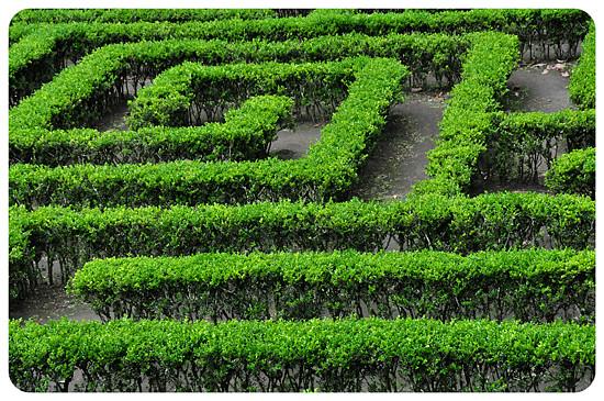 6979850545_c49026f7e1_z Jardin Botánico del Quindío - Armenia, Colombia Colombia Zona Cafetera  Zona Cafetera Quindio Nature Mariposario Guadua Garden Colombia Butterfly Botanical Bamboo