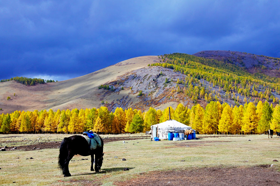 Horse trek in Mongolia IKILOMALLA matkablogi travel blog (3)