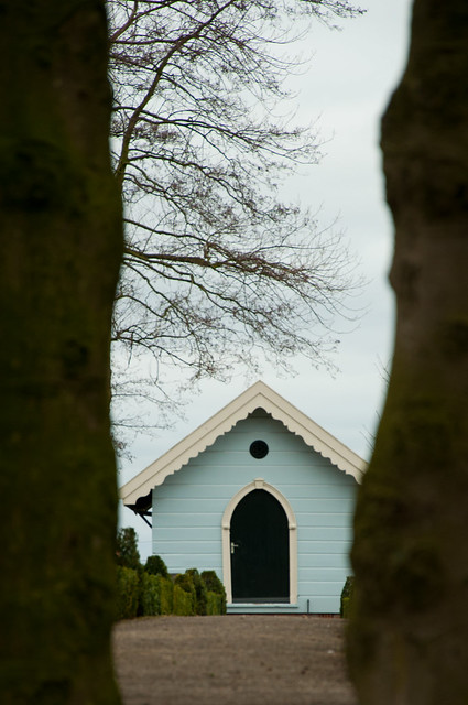 Cemetery blue
