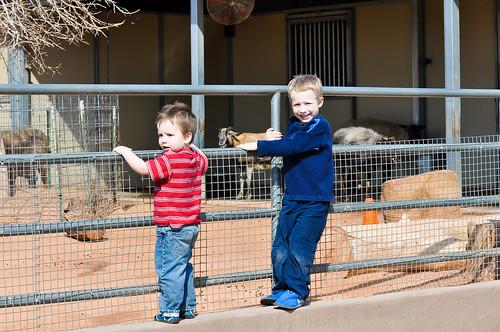 Feb 2012 Zoo-5