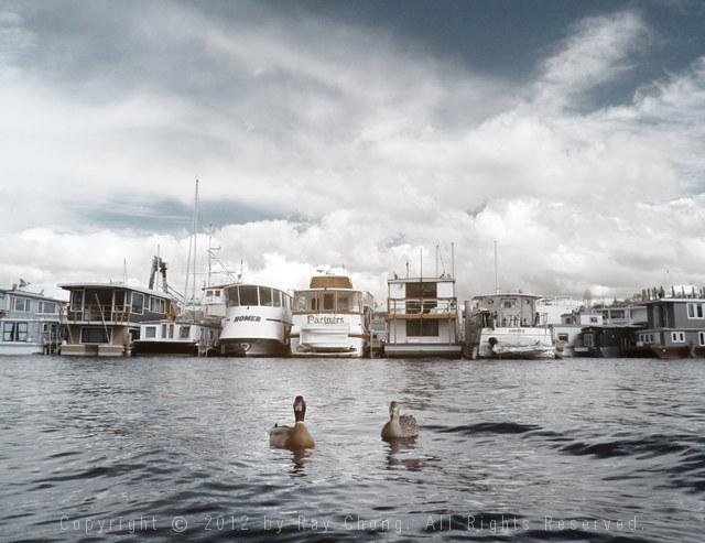 Houseboats, Lake Union, 2012