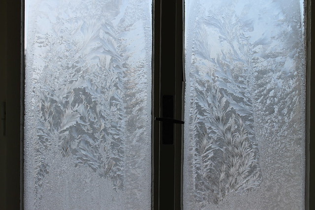 Frost patterns on the window, Lužec nad Vltavou, Czech Republic