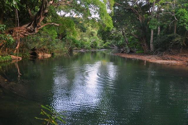 Mamaruk ripples