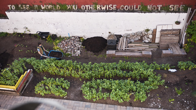 the touch me garden, civic center, san francisco