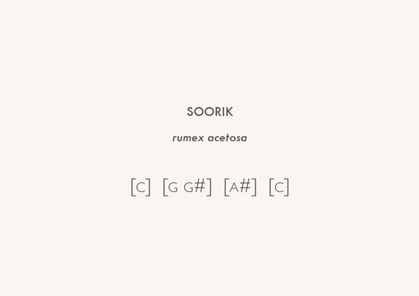 Score Card (Snape)
