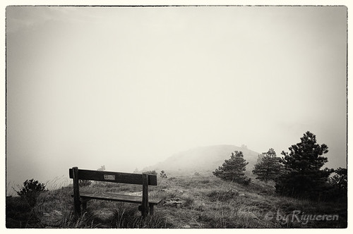 The bench and the Mist
