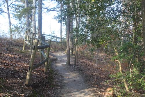 Mason Neck State Park - Bay View Trail - Trail