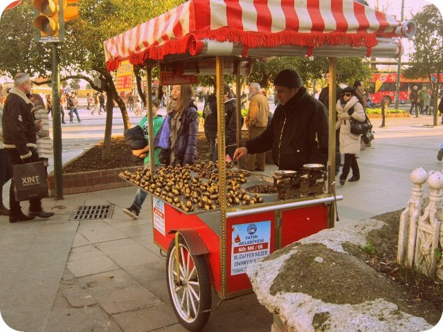 2012_0103_Turkey_Istanbul (13)