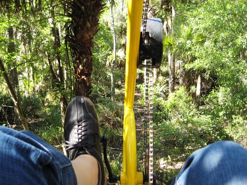 Up in the Treetops on the Cypress Canopy Cycle, Florida EcoSafaris, St. Cloud, Fla.
