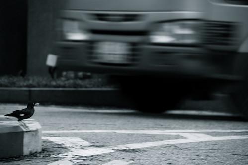 Pedestrian by vishangshah