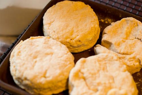 biscuits10