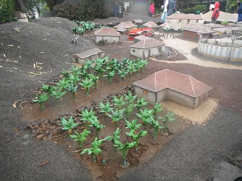 Банановые плантации // Banana plantation