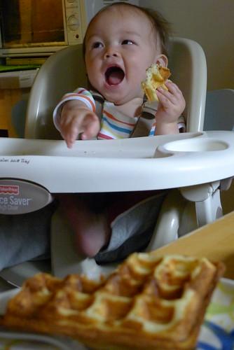 hi Waffle!