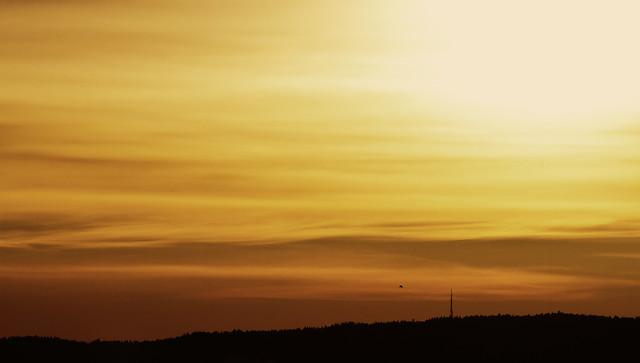 Late Winter, Low Sun #03