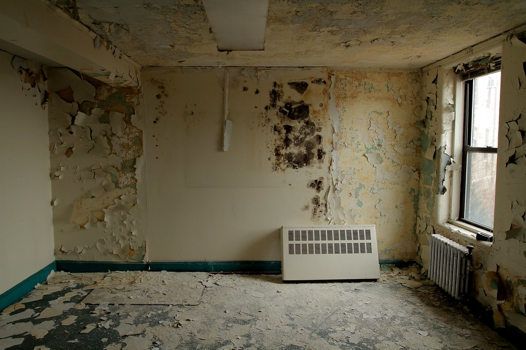 Moldy Walls Bayley Seton Hospital
